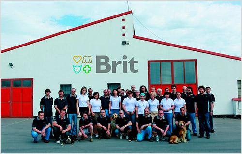 Компания Brit